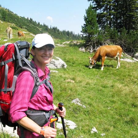 Wanderer und Kühe auf der Reiter Alpe