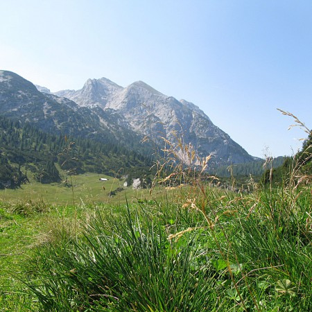 Bergwelt Reiter Alpe