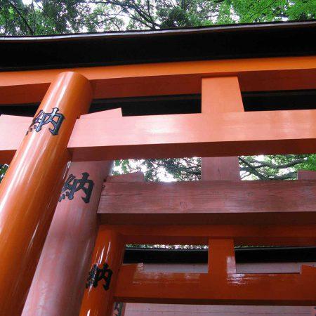 Rote Inari Torii in Kyoto