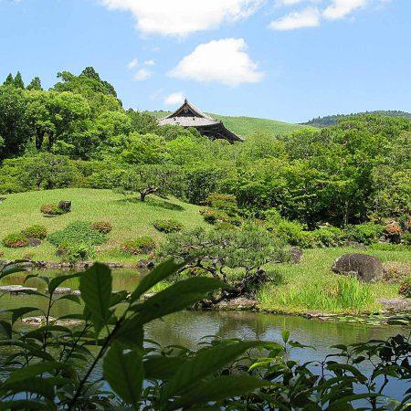 Grüne Landschaft im Isuien Garten in Nara