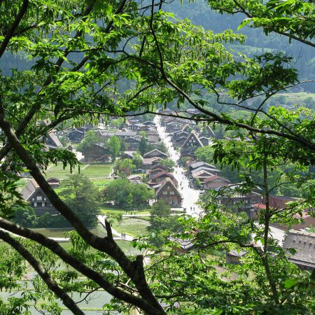 View of the village of Shirakawa-gō through some trees