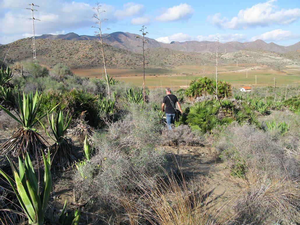 Wanderung im Parque Natural del Cabo de Gata-Níjar