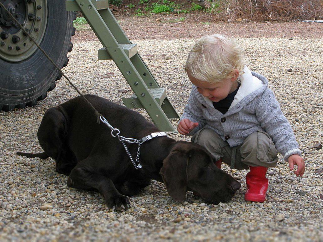 Der kleine Junge Tijn streichelt den Jagdhund Jari