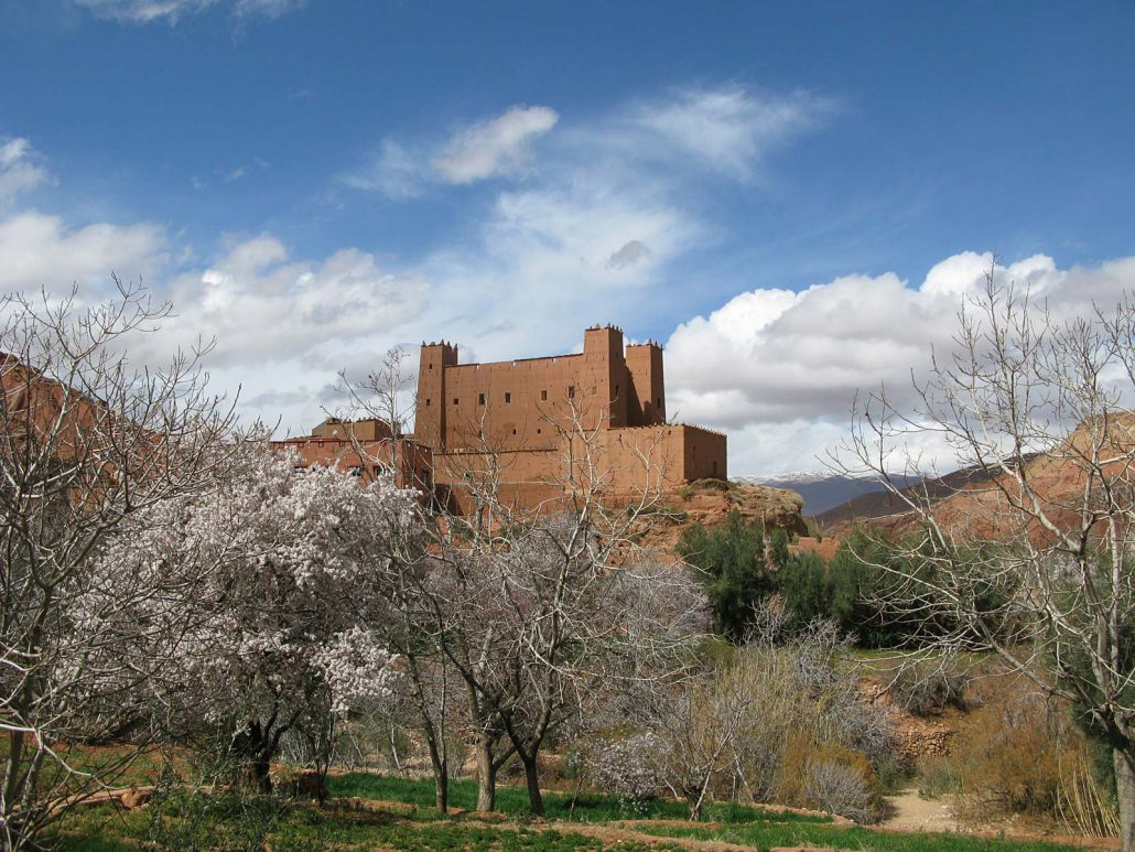 Kasbah in Rose Valley in Morocco