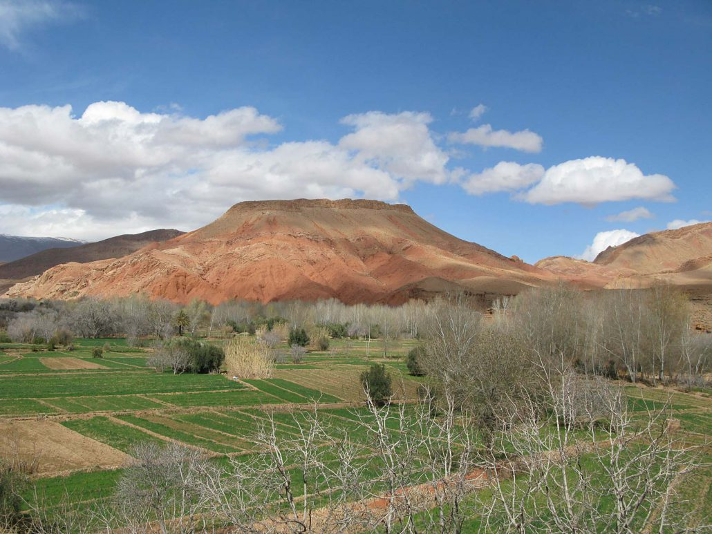 Rose Valley in Morocco