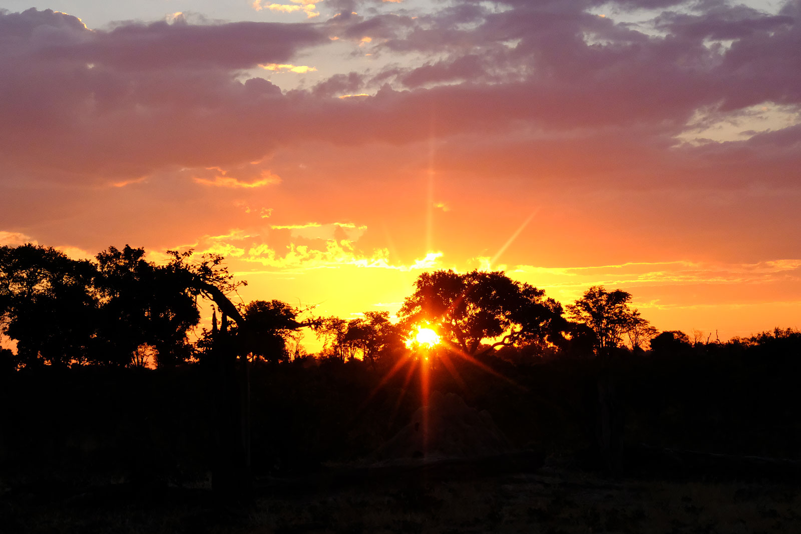 Fantastically beautiful sunset in the Okavango Delta