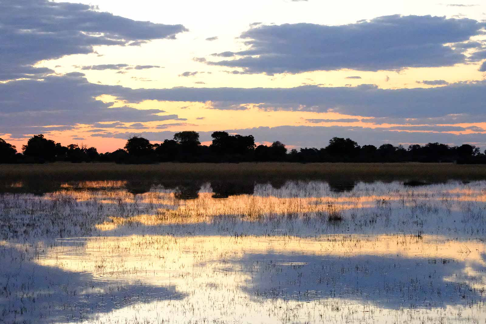 Sunset in the Okavango Delta in Botswana