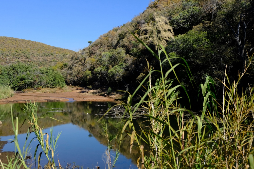 Teich auf der Taaibos Farm in Südafrika, Waterberg